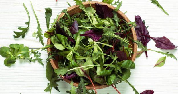 Jadalne liście i sałaty