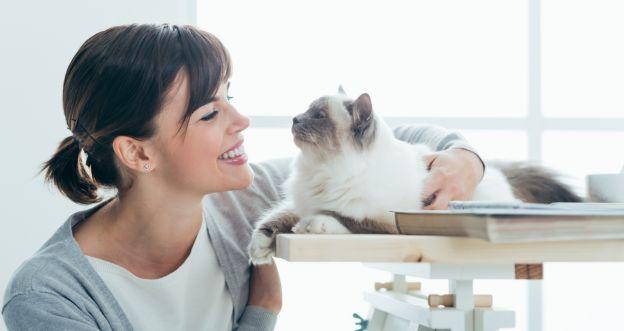 Co naprawdę chce przekazać ci twój kot?